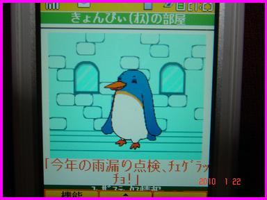 きょんぴぃ100122-1.JPG